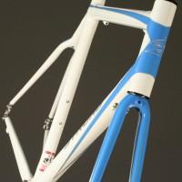 Custom Blend Carbon Road Frame w/ Custom Liquid Paint