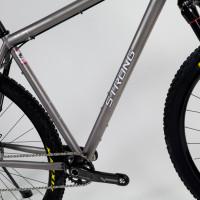 Custom Blend titanium 29er MTB with Sram XX1 and Rock Shox.