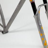Titanium Mountain Bike Single Speed 29er