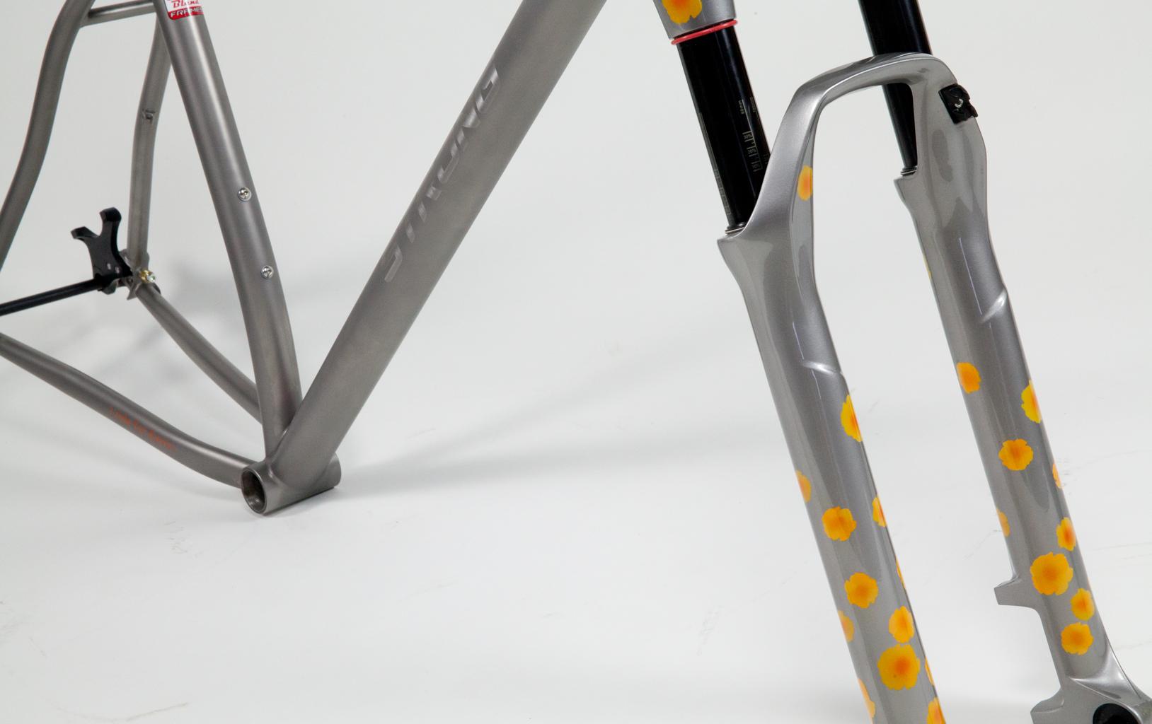 Strong Frames Titanium Mountain Bike Single Speed 29er